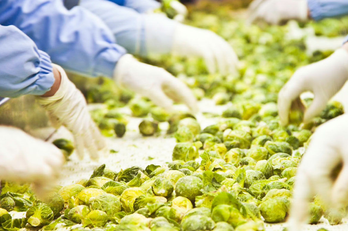 FSSC 22000 Standard for Food Manufacturing (ISO/TS 22002-1)